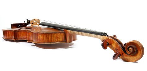 Violin seen from scroll