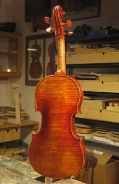 Violin from back